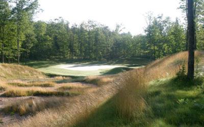 Big Fish Golf Club – Hook, Line And Sink It