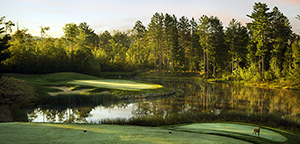 Tee Times Magazine - Fairways-Greens - Minnesota