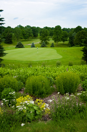 2019 Marks The Golden Anniversary Of Dahlgreen Golf Club – You Have Come A Long Way Baby!