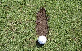 Divots Can Tell You Everything