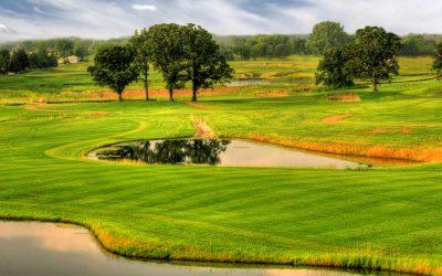 Wedgewood Cove – Southern Comforts North Of Iowa